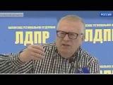 Жириновский: Европа пожинает плоды дружбы с США Новости Украины сегодня
