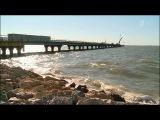 Строительства моста через Керченский пролив - под пристальным вниманием экологов