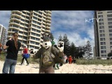 Furry Down-Under 2012 Highlights