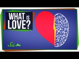 Worlds Most Asked Questions What Is Love