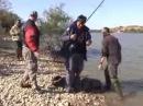 Рыбалка в Испании на реке Эбро, ловля карпа и сома на фидер видео часть 2