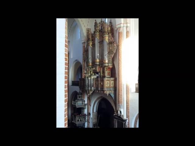 Heinrich Scheidemann (?): Ach Gott, vom Himmel sieh darein - Pieter Dirksen (Roskilde, live)