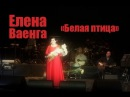 Руслан Fobos RuFobos на концерте Елены Ваенги, 26.11.2014, Белая птица