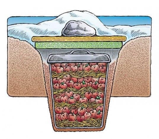 ёмкость для воды на дачу