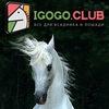 Клуб любителей лошадей IGOGO.CLUB