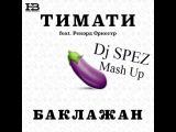 Тимати feat. Рекорд Оркестр & GROOVYTEK - Баклажан ( Dj SPEZ Mash Up)