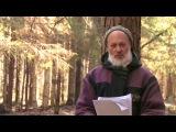 Владимир Антонов - Даосская йога (цигун, тайцзи, дао), часть 1
