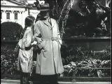 Salamandra (1928)