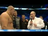 Бокс  Фёдор Емельяненко