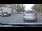Не спеша переходящий дорогу голубь стал виновником тройной аварии Оригинал новости RT на русском: https://russian.rt.com/article/125964