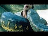 Anaconda - Melhores Cenas