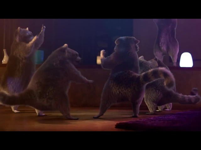 Life Is On by Schneider Electric - Raccoon Dance Party! (Crowbar - Existence is Punishment)
