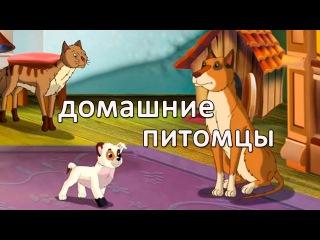 Развивающие мультфильмы Совы - Мои Домашние Питомцы - Собака