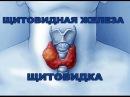 ЩИТОВИДКА, ЩИТОВИДНАЯ ЖЕЛЕЗА - ОЛЬГА БУТАКОВА