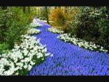 Пишутся прекрасные пейзажи!...