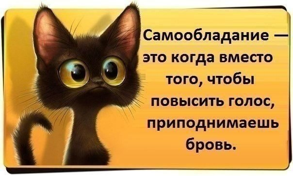 http://cs624125.vk.me/v624125038/16112/Vdt5T4T7KkQ.jpg