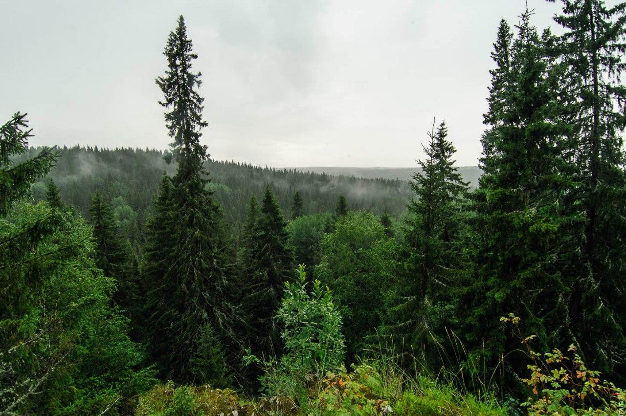 Вид со скалы Петушок
