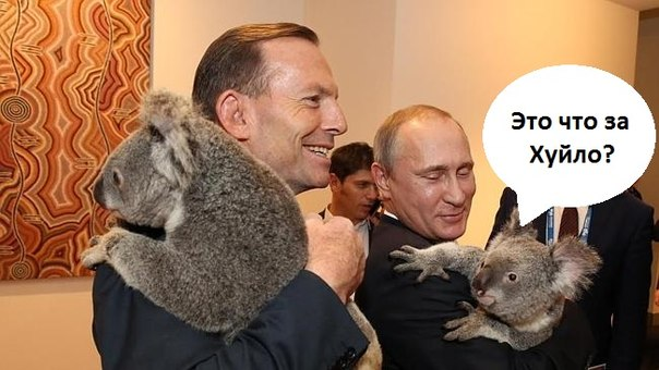 """Путин заявил, что Россия не допустит уничтожения """"политических противников"""" Киева на Донбассе - Цензор.НЕТ 9659"""