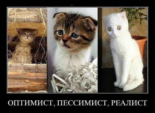 Порно фото руских сериалов движение защиту
