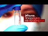 Фильм Эбола. Эпидемия из пробирки 2014