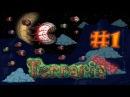 Выживание в Terraria (Expert) - Начало начал и 50к! 1