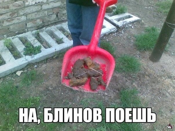 """Боевики отвели артиллерию от Широкино. Ситуация немного стабилизировалась, - полк """"Азов"""" - Цензор.НЕТ 7561"""