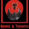 "Группа ""ФЕНИКС & ТАРАНТУЛ"""