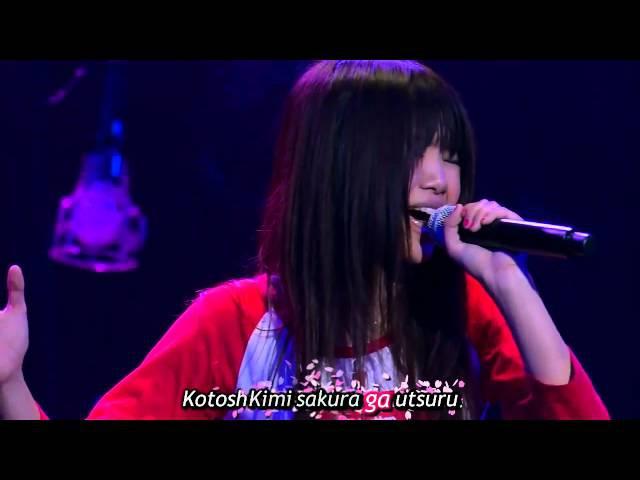 Sakura   Ikimono-gakari Live Japanese Lyrics