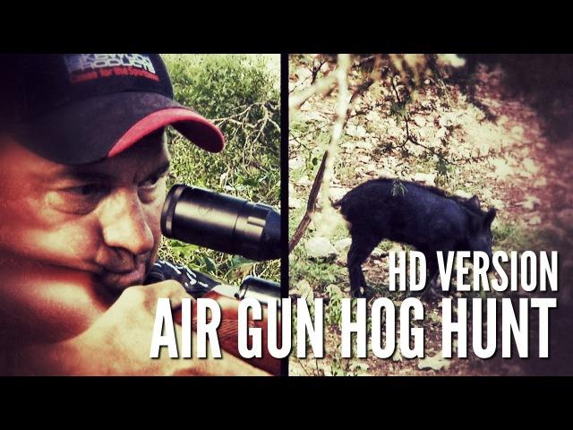 Hog Hunt With Airgun HD - GAMO Hunter Extreme .25 caliber