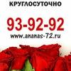 """Доставка цветов по Тюмени - салон """"АНАНАС"""""""
