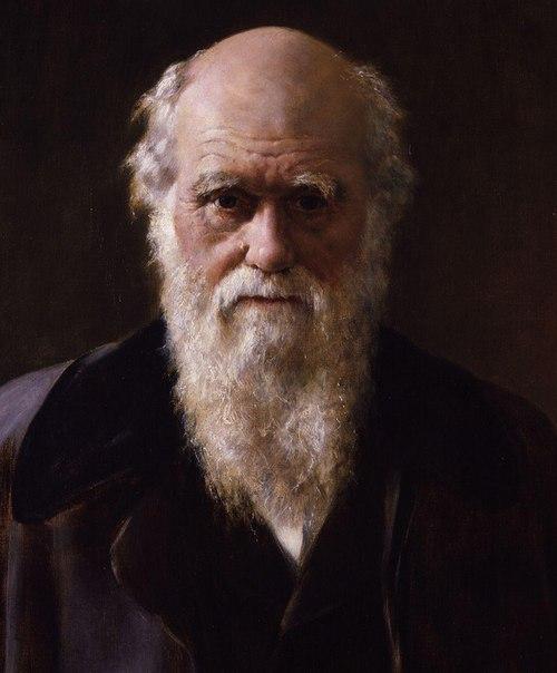 Стало известно, что Disney заключили сделку с автором сценария оскароносного триллера «Траффик» Стивеном Гейганом на написание сценария и постановку пока безымянной картине, в которой будет задействован Чарльз Дарвин