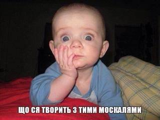"""""""Может, Путин приедет, метнет. Ну, не Путин, так хрен с ним, Медведев"""", - под эгидой министерства культуры РФ в Пермском крае состоялся первый турнир по метанию коровьих лепешек - Цензор.НЕТ 8322"""