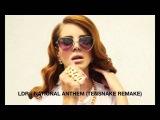 Lana Del Rey - National Anthem (Tensnake Remix)