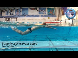 Butterfly Swimming Dolphin Kick