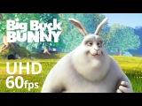 Big Buck Bunny 60fps 4K - Official Blender Foundation Short Film