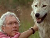 Жизнь с волками (Living with Wolves)
