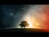 Paul Webster - The Wolf (Original Mix) HQ HD