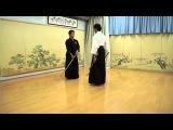 Genko Nito Ryu Kenjutsu - 2 sword Samurai style