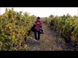 Iubesc Moldova Геннадий Арабаджи - Молдавия (2010)