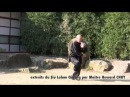 SIU LOHAN MASTER HOWARD CHOY MARS 2012 NANTES Youtube