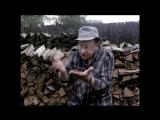Фрагмент фильма «Ёлки-палки!», Киностудия им. М. Горького, 1988г,