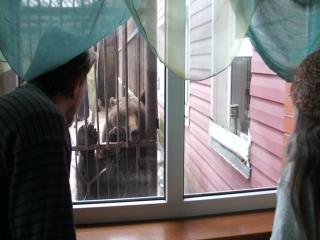 2015.02.19-2 Встреча с Большой Медведицей