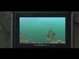 Камера для рыбалки в кейсе