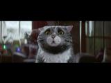 Очень милая реклама про кота и Рождество [720p]