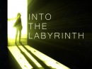 Into The Labyrinth 60 FPS