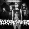BEYOND THE STRUCTURE - АЛЬБОМ ОНЛАЙН!