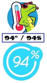 Игра 94% Лыжи » Все про игры