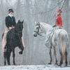 ♞ Конные прогулки (СПб)| Верховая езда
