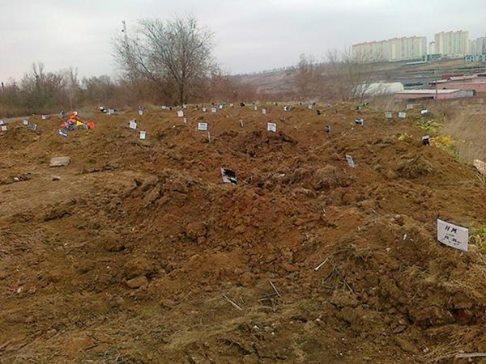 Контрразведка СБУ обезвредила подконтрольную РФ диверсионную группу, готовившую теракты в районе Мариуполя - Цензор.НЕТ 9676