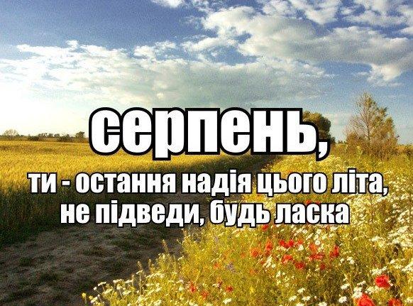 Боевики намеренно занижают количество украинских пленных, - Ирина Геращенко - Цензор.НЕТ 9370